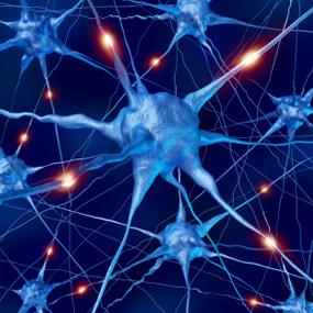 νευρωνας